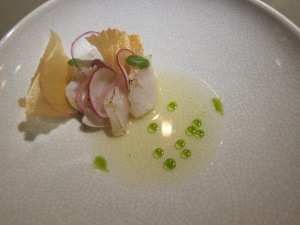 Scallop with local clams, Lacto fermented apples, basil oil